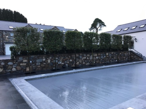 Silverstream Landscapes - winner Private Gardens €50,000 - €100,000