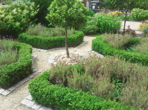 Amazon Landscaping and Garden Design - winner Private Gardens under €5,000