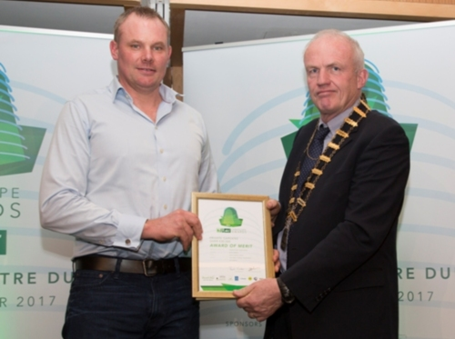 Greenstone Landscapes - Award of Merit Private Gardens over €30,000