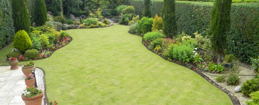 Landscape Gardener Dublin| Garden Maintenance| Garden ...